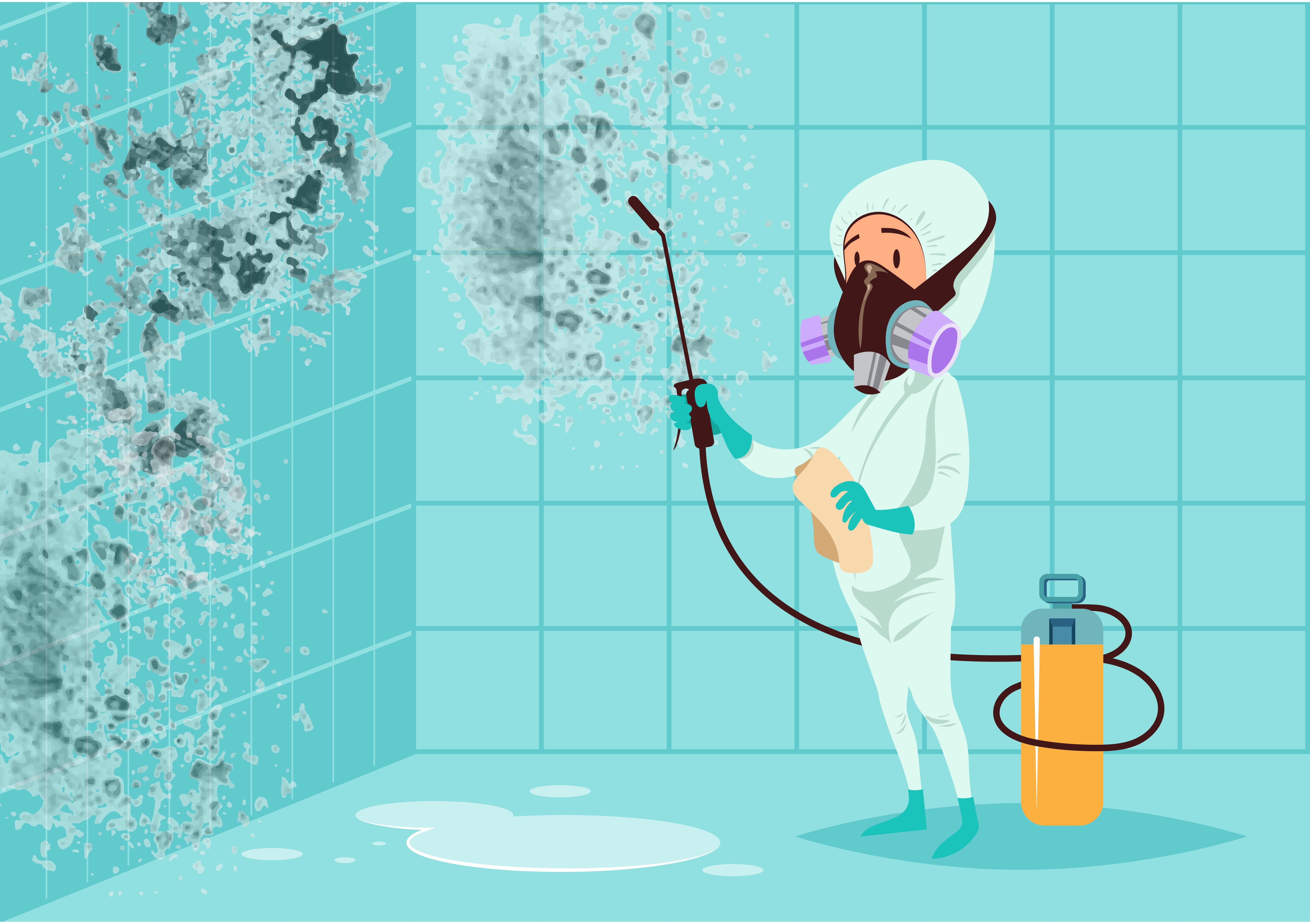 Mofo nas paredes: como removê-lo?