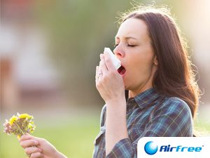 Primavera e alergias respiratórias: qual a relação?