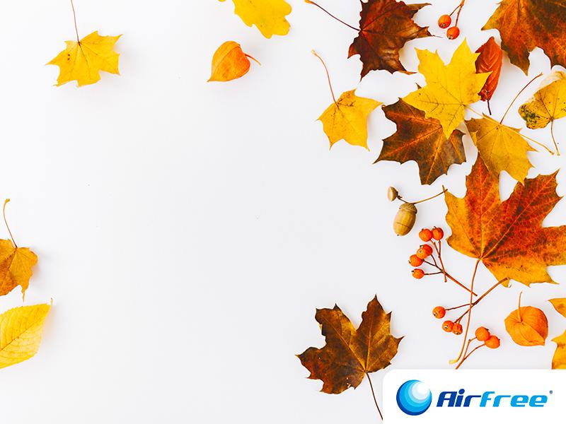 Outono em Portugal: muito mais do que castanhas assadas!